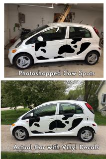 Virtual-and-real-cow-car